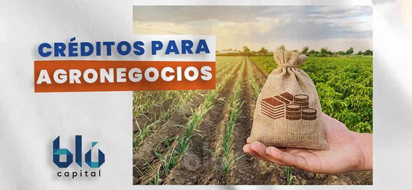Financiamiento agro industrial